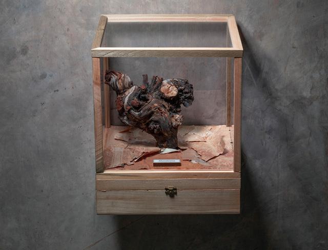 Abundantia box